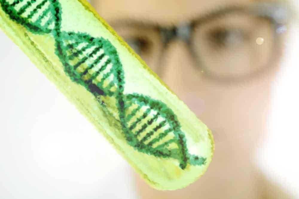 Изучение ДНК