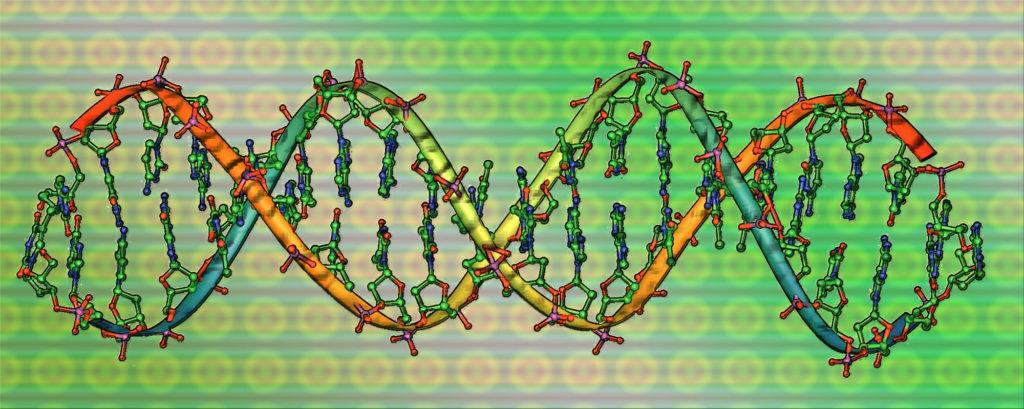 ДНК-тесты на историческое происхождение
