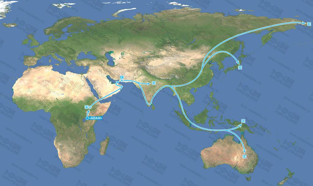 Миграция гаплогруппы C