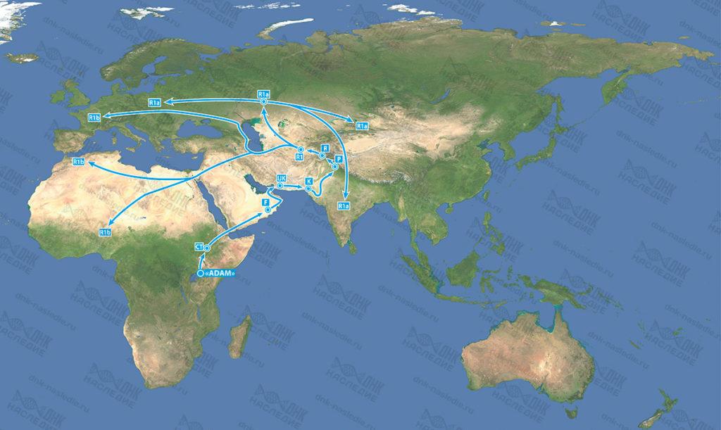 Миграция гаплогруппы R
