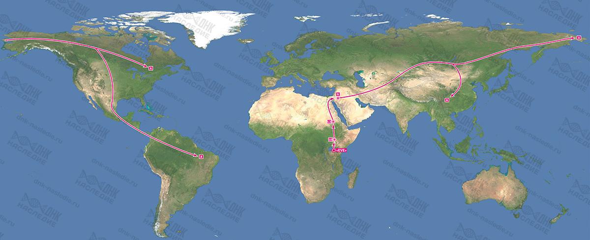 Миграция гаплогруппы A